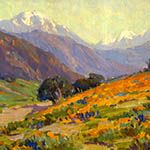 California Poppies by Benjamin Brown