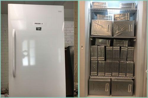 Great History Freeze freezer 4