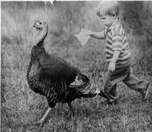 PSN-Tulula-the-turkey