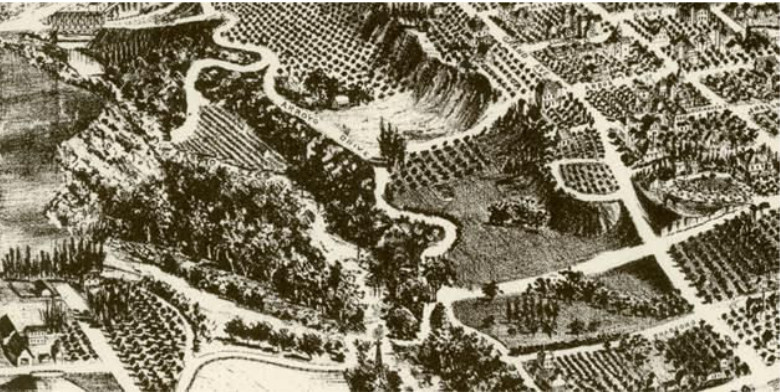 "The location of ""Camp Idle a While"" was described as a ""well-shaded spot"" of ""fine Live Oak trees"" in August 1899. An 1893 lithograph of Pasadena shows a cluster of trees west of California Street in the Arroyo, which may have been the site of the camp."