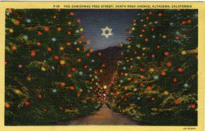 Christmas Tree Lane at night(Postcard Collection)