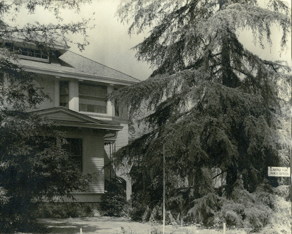 """This photograph shows Mr. Day's home in 1939 at 415 S Lake Avenue. Note the sign on the tree on the right edge of the photograph that reads """"Clarence P. Day Engineer Contactor."""" (Main Photo Collection, D15-2)"""